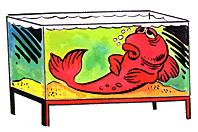 аквариумные рыбки умирают