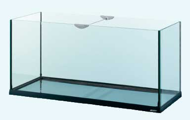 какой аквариум выбрать: стеклянный или акриловый