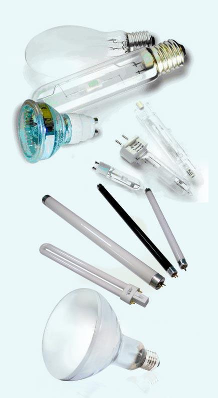 лампы для аквариума: люминисцентные, металлогалогенные, ртутные