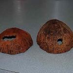 raspilennyj-kokos
